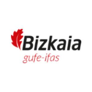 IFAS Instituto Foral de Asistencia Social