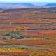 Foto cabecera noticia Rioja Alavesa